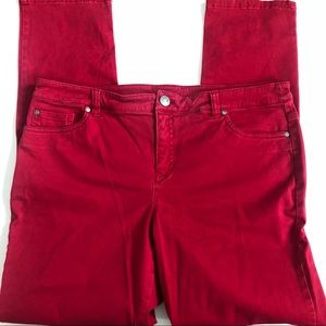 Style & Co Red Cotton Pants Sz 12